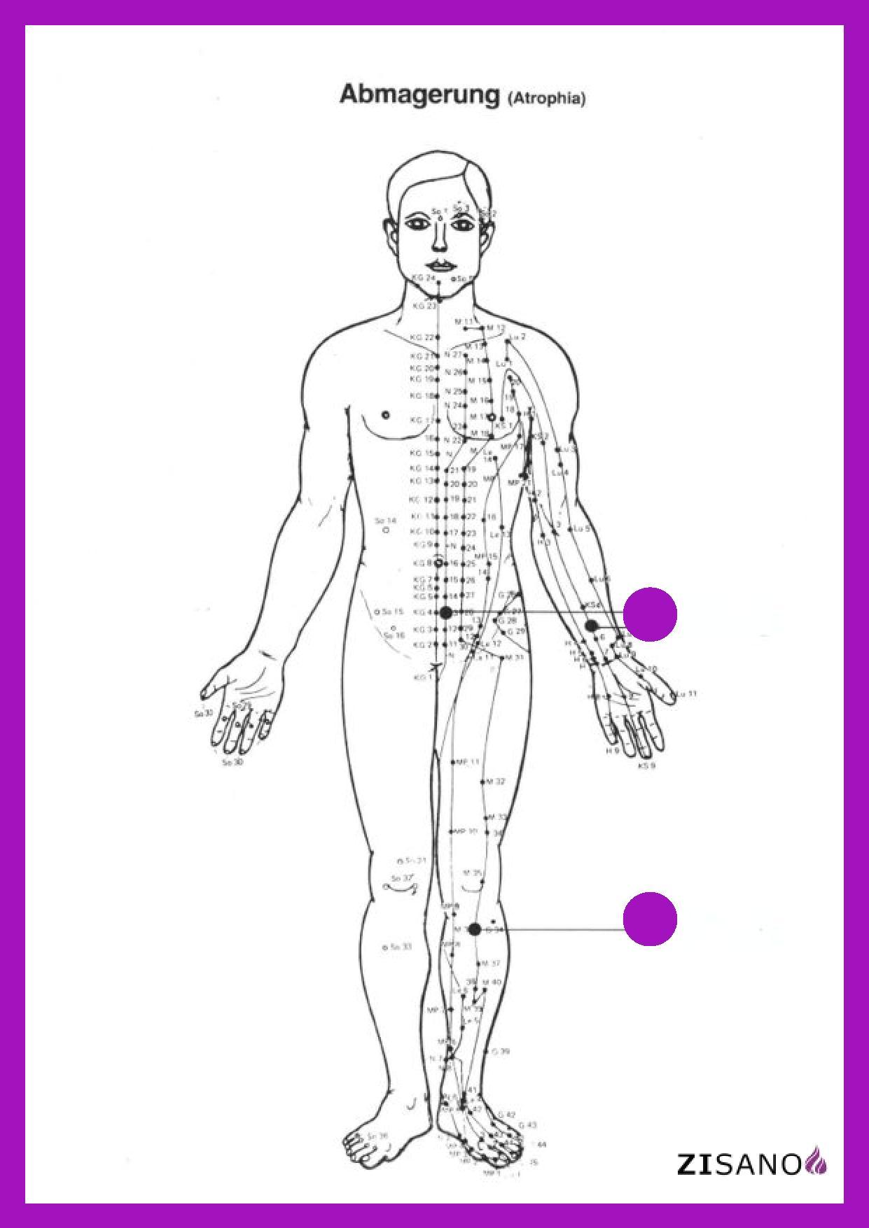 Unter Abmagerung oder Inanition versteht man eine Reduktion des Körpergewichts auf unter 80 % des Normalgewichts.