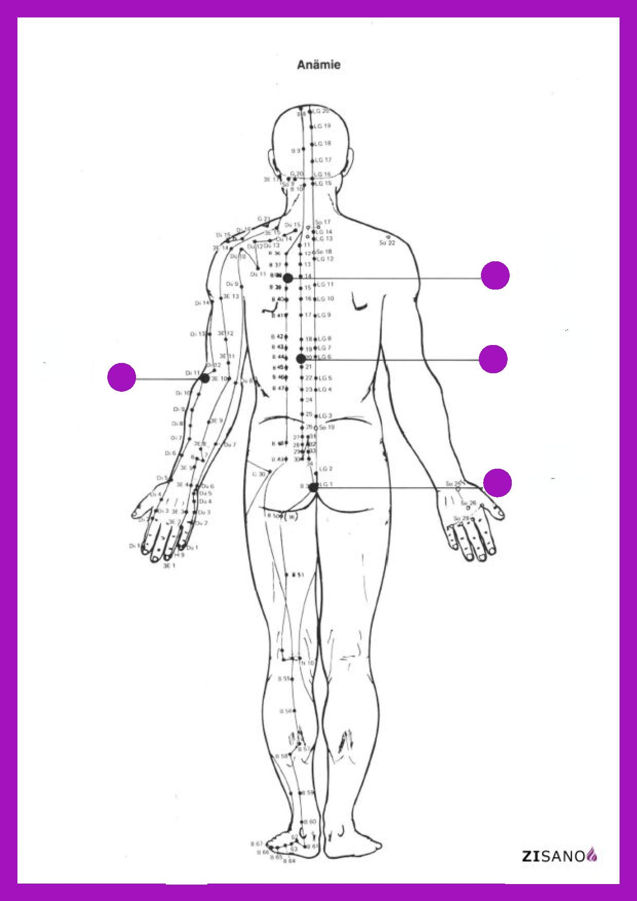 Meridiane - Anaemie - Therapie