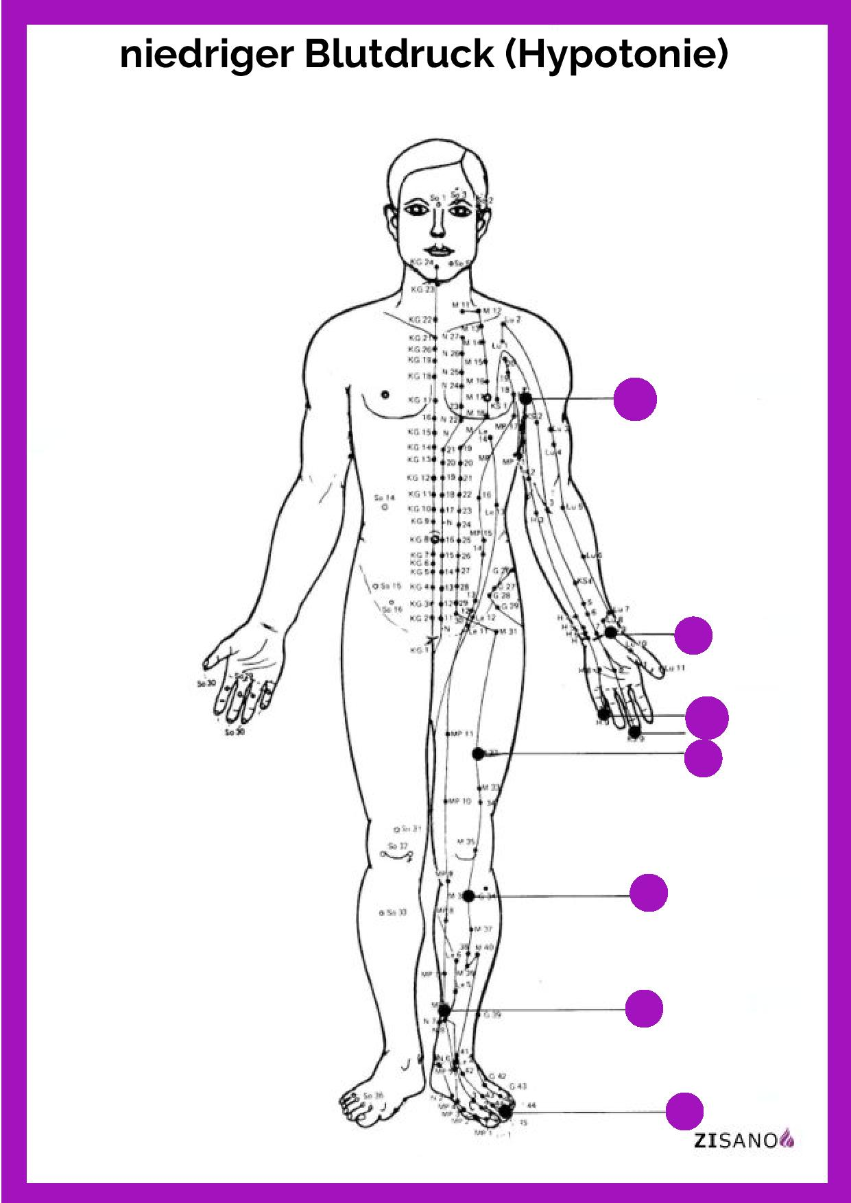 Meridiane - Blutdruck, niedriger (Hypotonie) - Behandlung