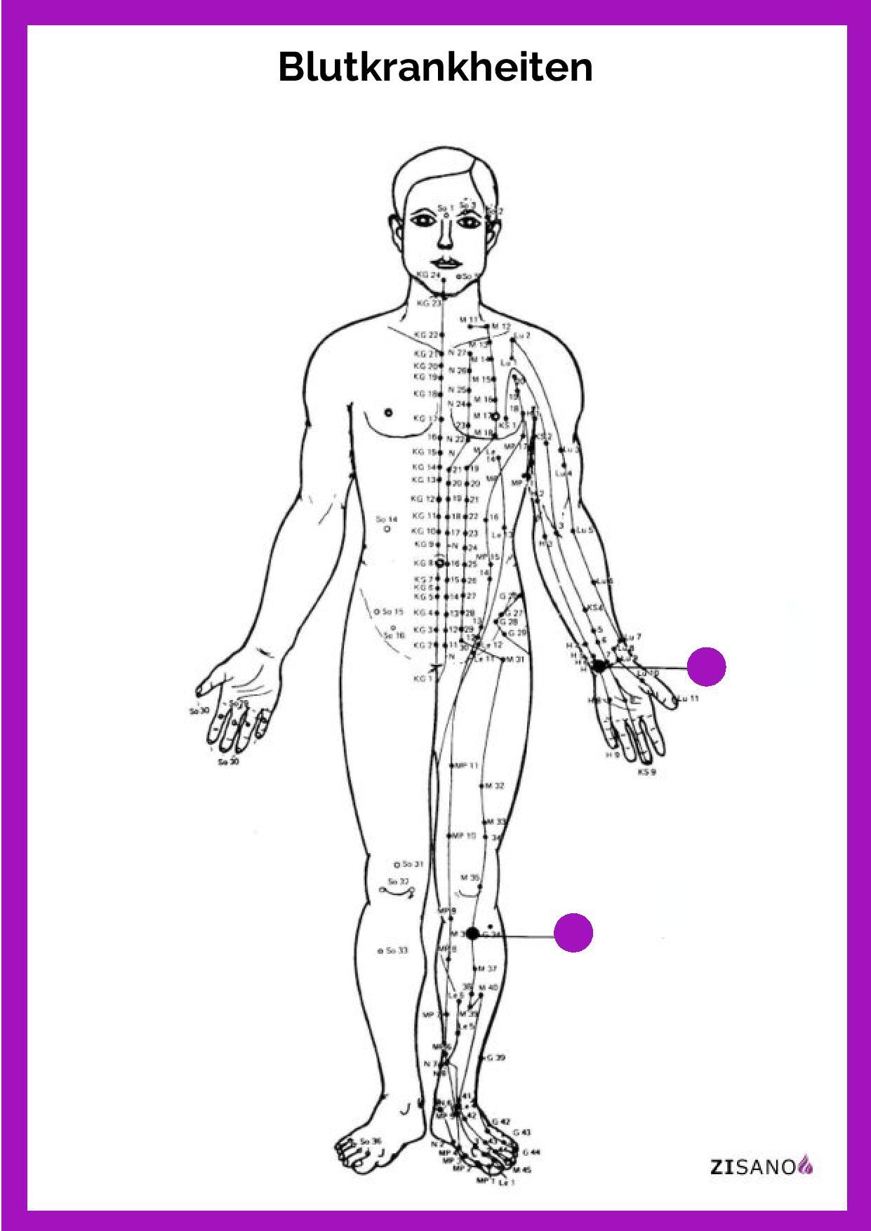 Meridiane - Blutkrankheiten - Behandlung