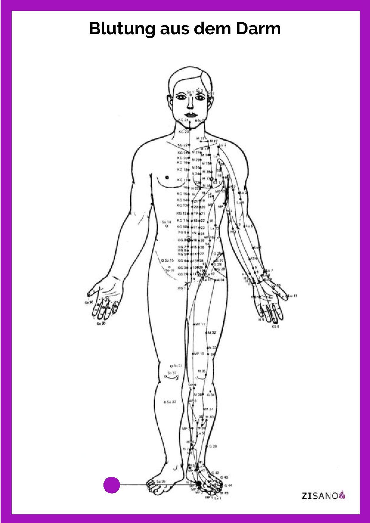 Meridiane - Blutung aus dem Darm - Behandlung