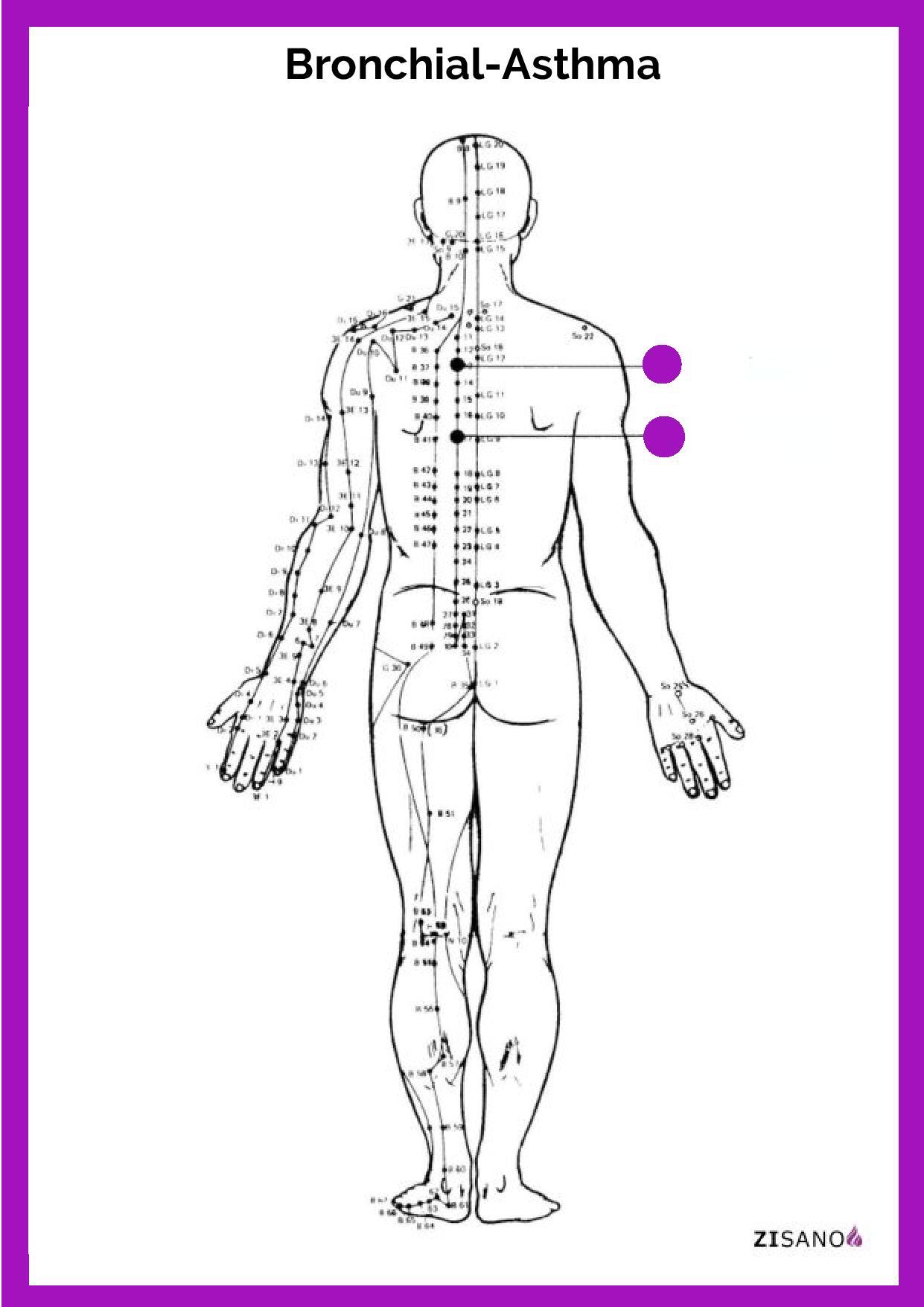 Meridiane - Bronchial-Asthma - Behandlung