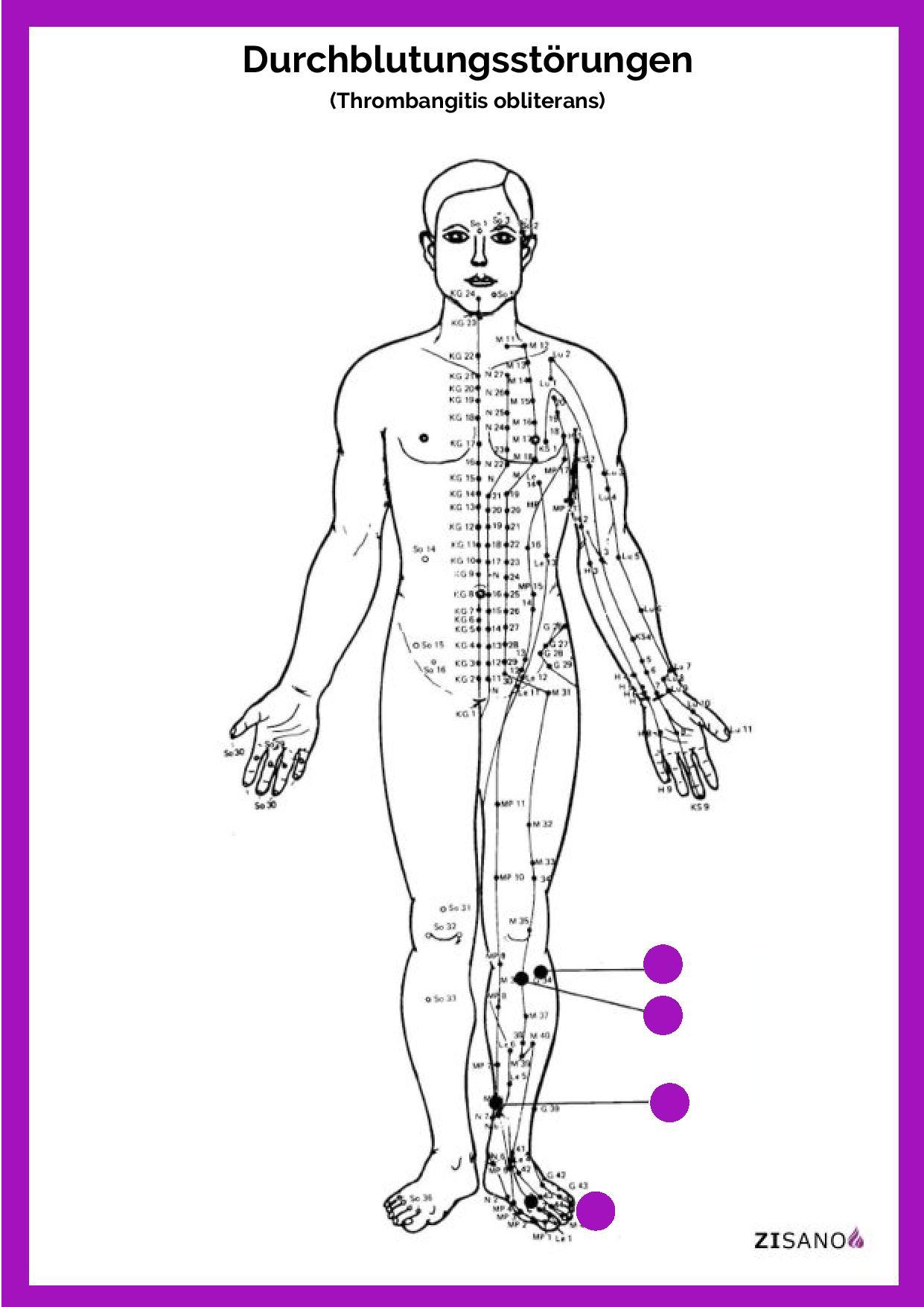 Meridiane - Durchblutungsstörungen  - Behandlung