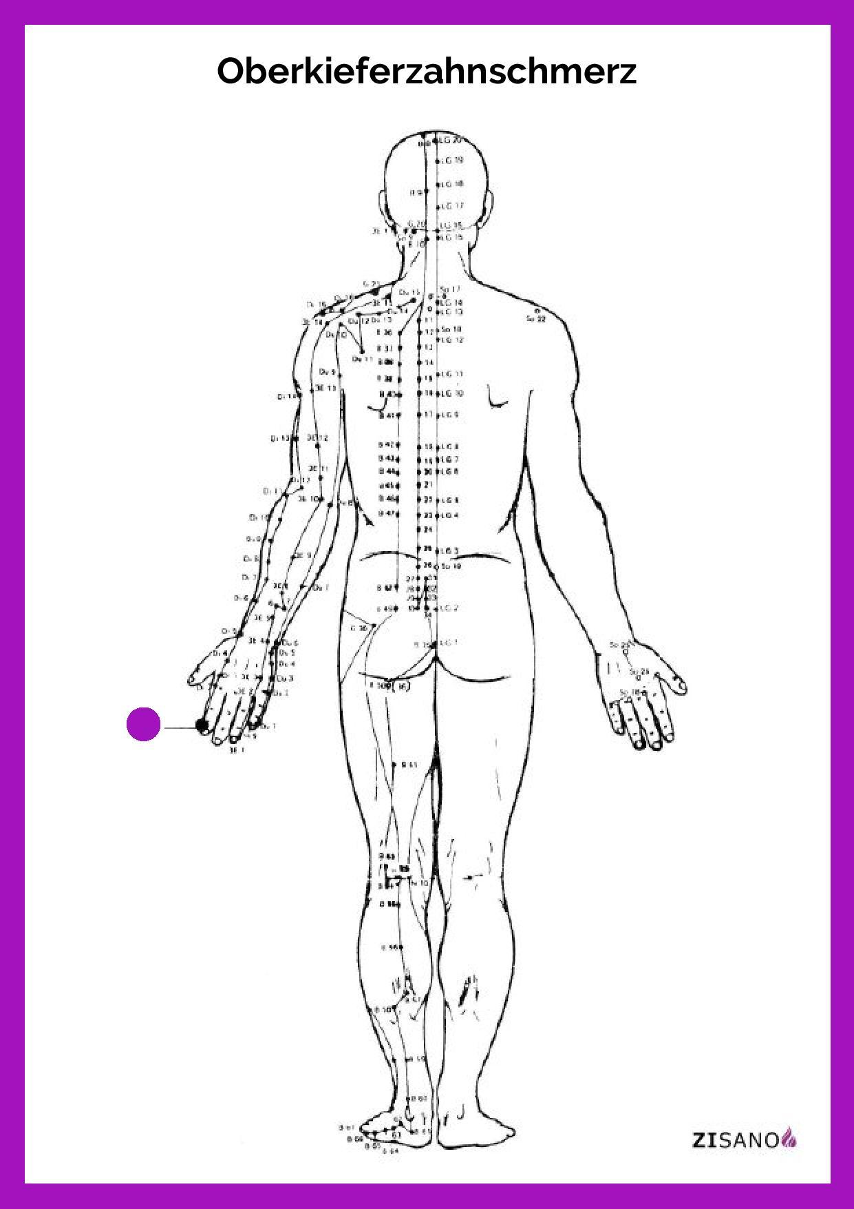 Meridiane Oberkieferzahnschmerz Behandlung und Schmerzlinderung