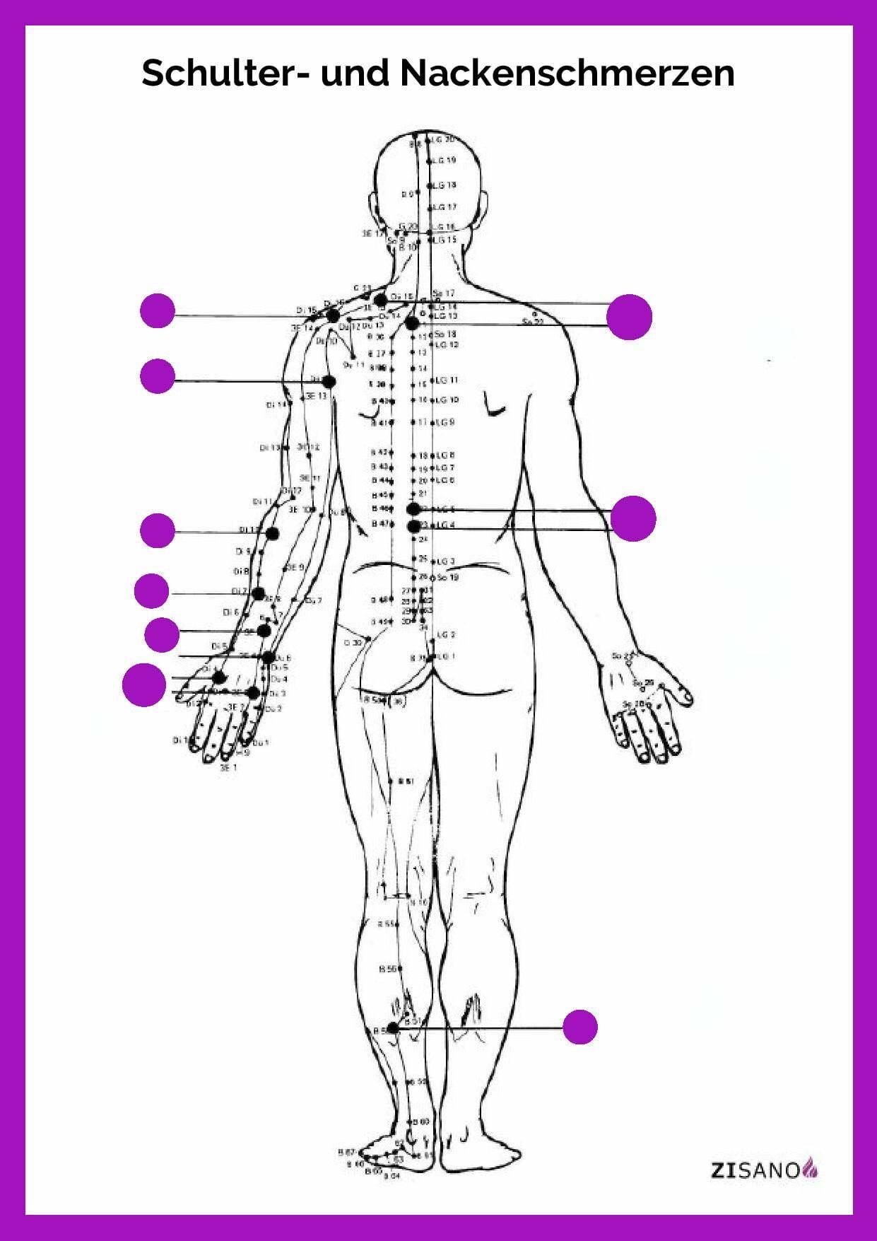 Meridiane - Schulterschmerzen - Nackenschmerzen - Beschwerden