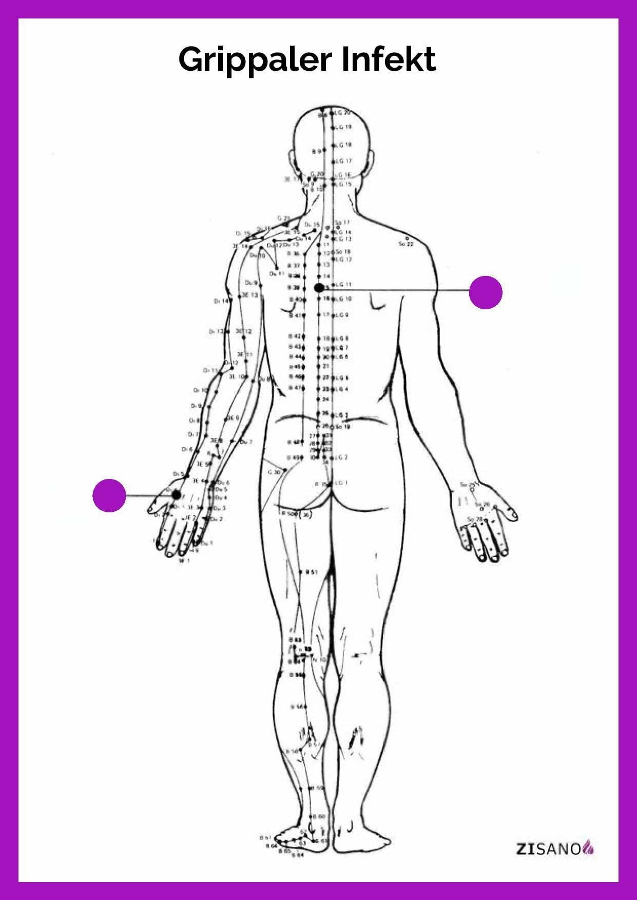 Meridiane - Grippaler Infekt- Behandlung