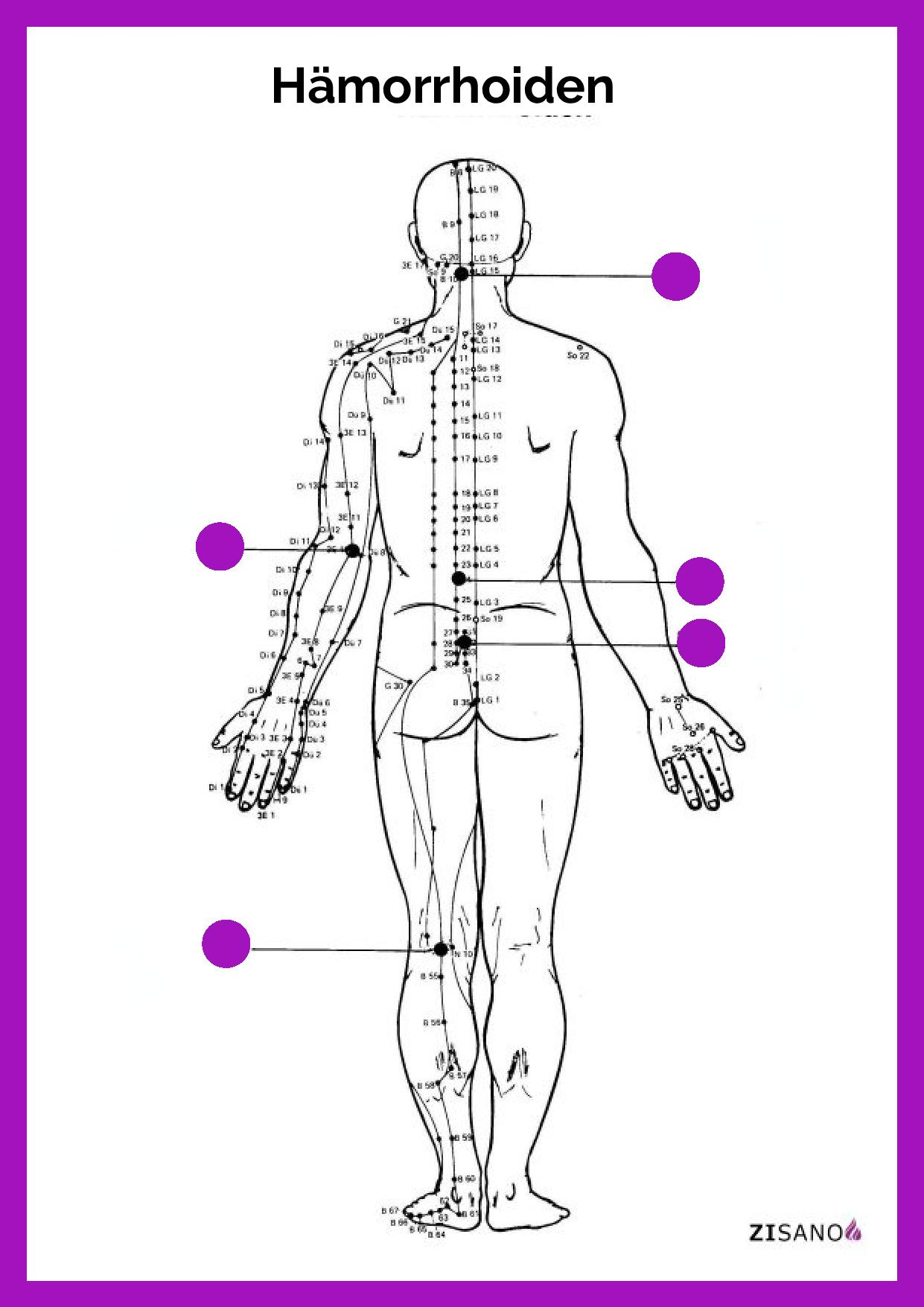 Meridiane - Hämorrhoiden- Behandlung