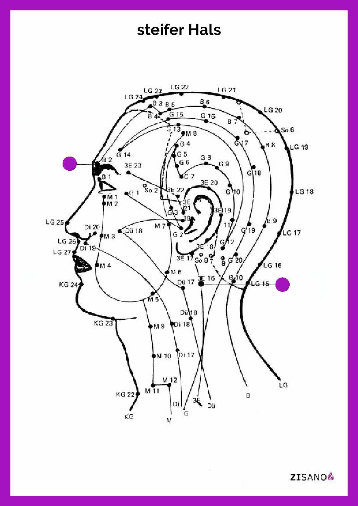 Meridiane - Hals, steifer- Schmerzlinderung