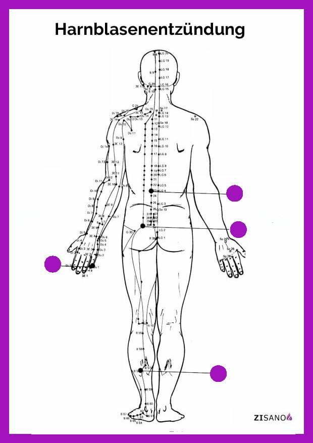 Meridiane - Harnblasenentzündung- Schmerzlinderung