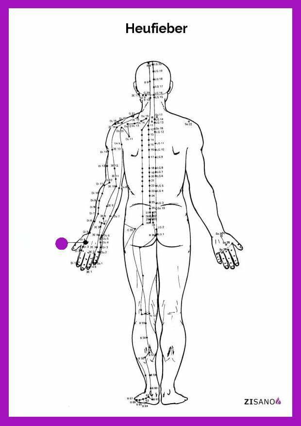 Meridiane - Heufieber - Behandlung