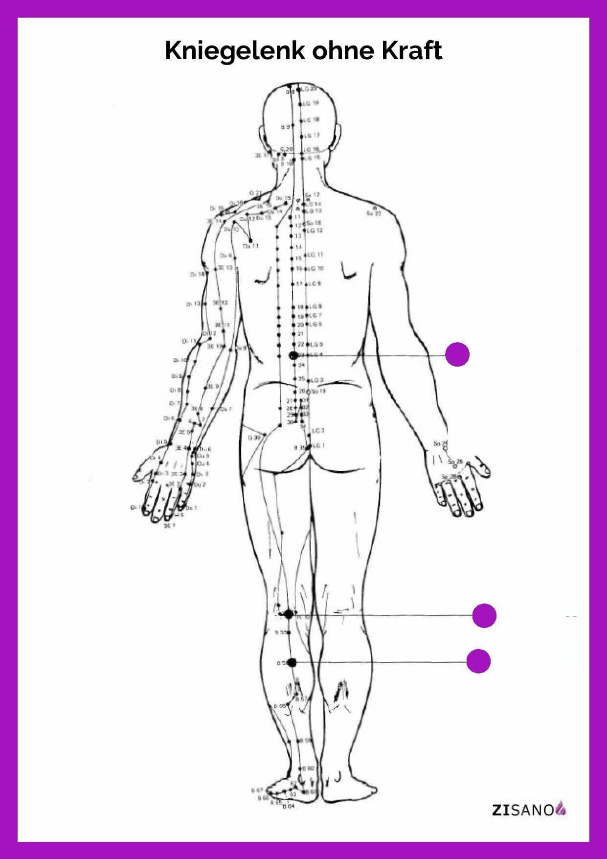 Meridiane - Kniegelenk ohne Kraft - Beschwerden