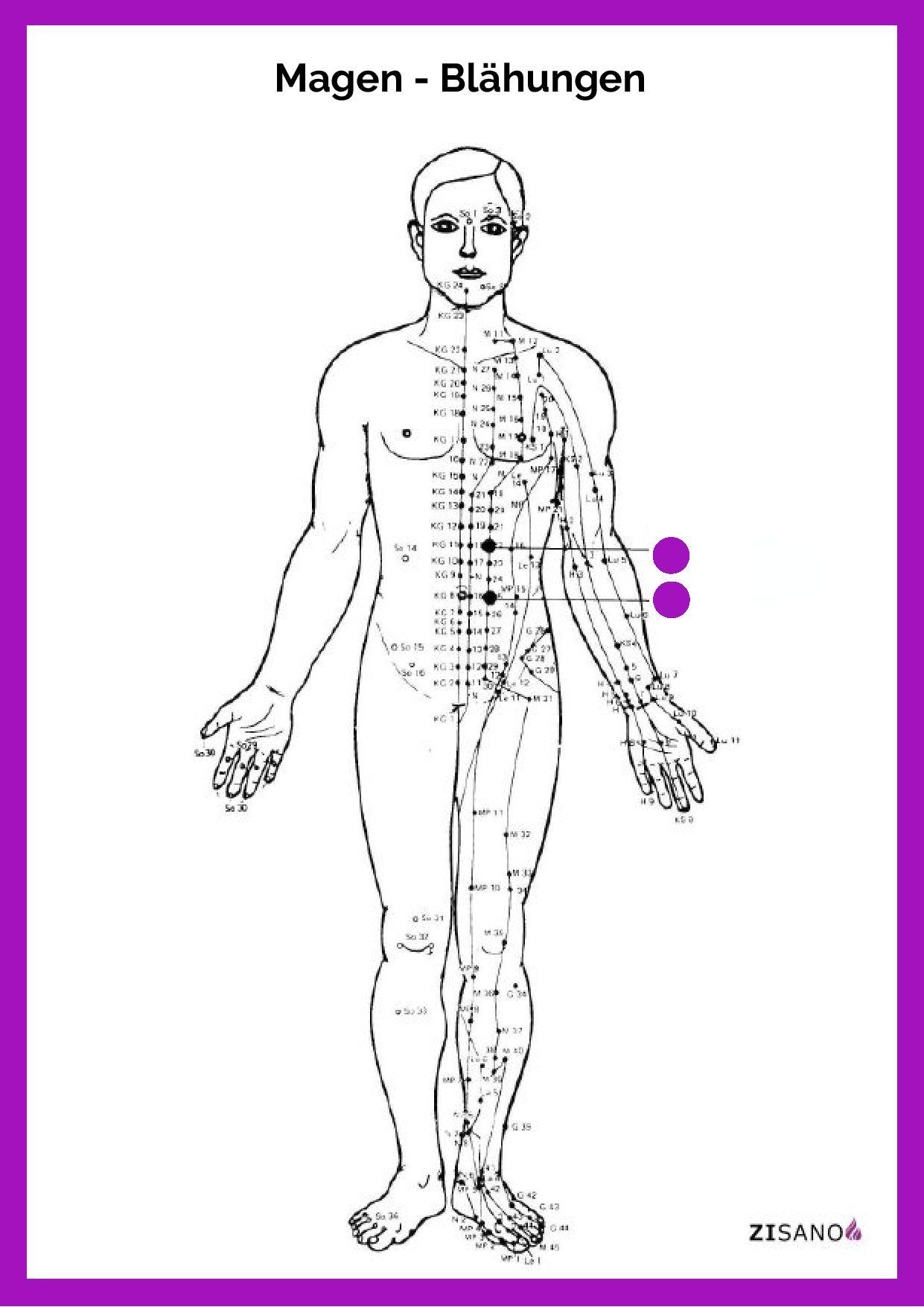 Meridiane- Magen - Blähungen - Beschwerden