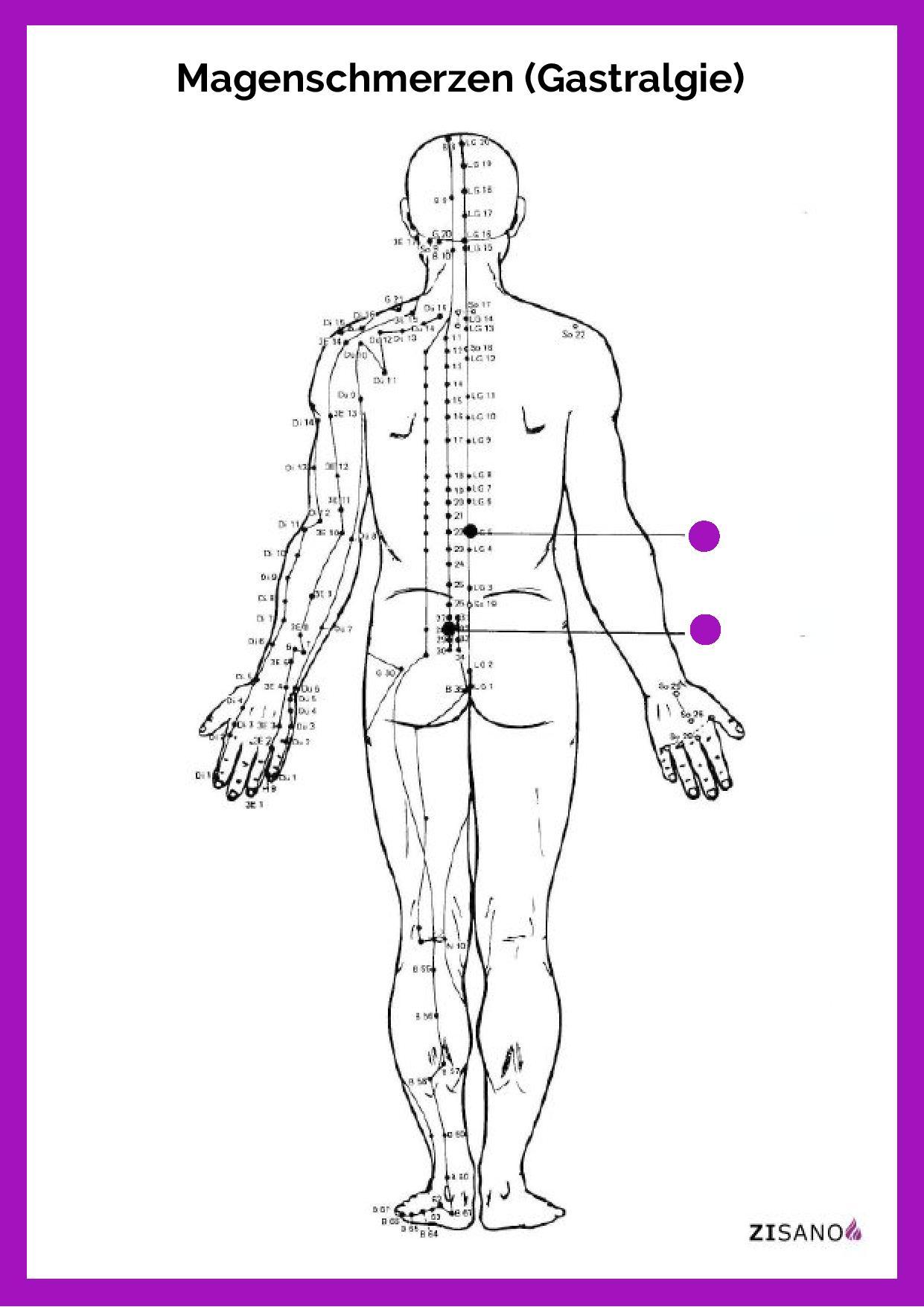 Meridiane - Magenschmerzen - Gastralgie - Beschwerden