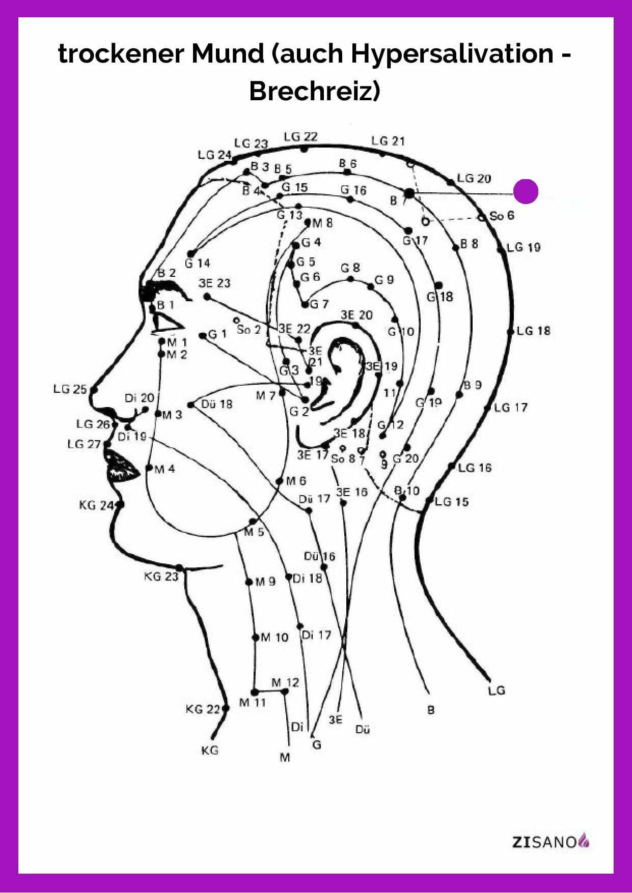 Meridiane - trockener Mund Hypersalivation - Brechreiz - Beschwerden