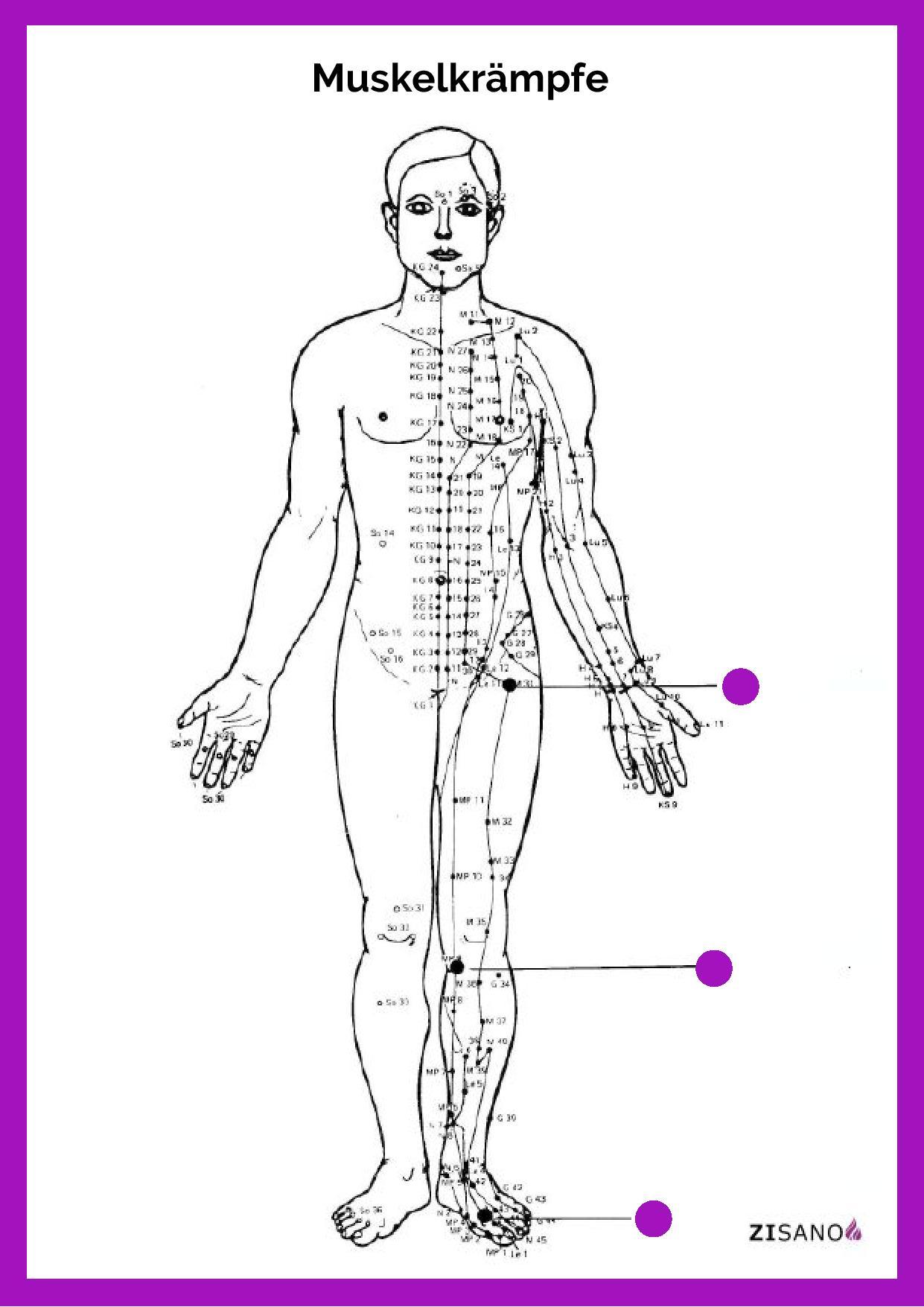 Meridiane - Muskelkrämpfe - Beschwerden