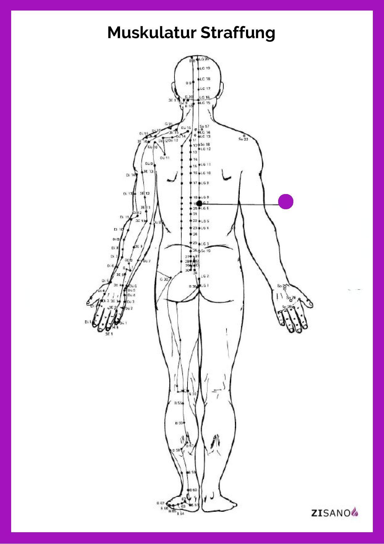 Meridiane - Muskulatur Straffung - Beschwerden