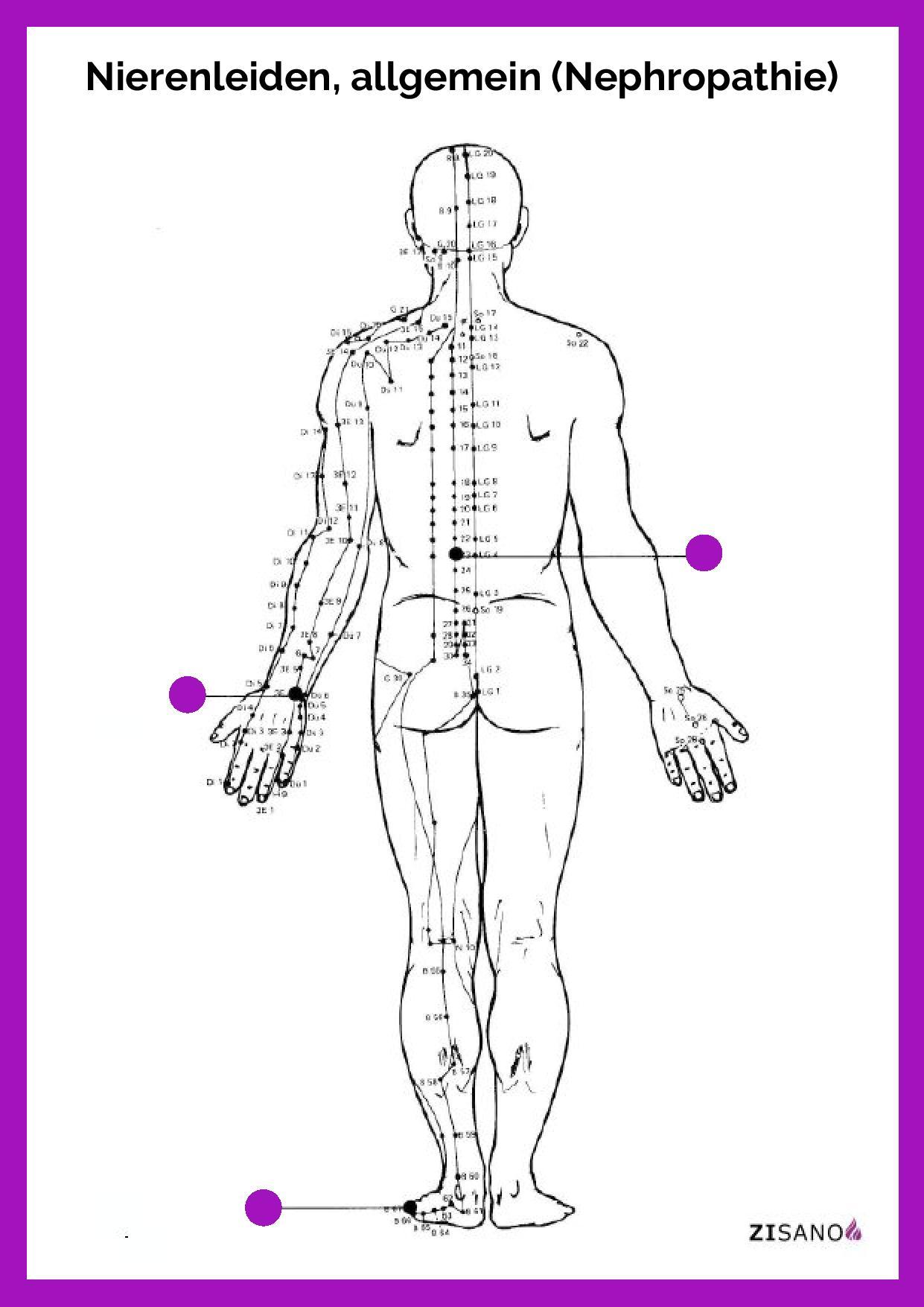 Meridiane - Nierenleiden allgemein - Nephropathie