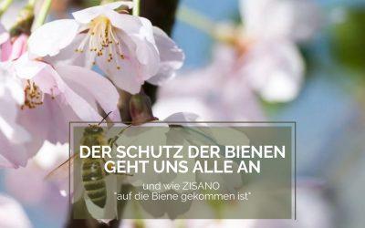 """Der Schutz der Bienen geht uns alle an – und – Wie ZISANO """"auf die Biene gekommen ist"""""""